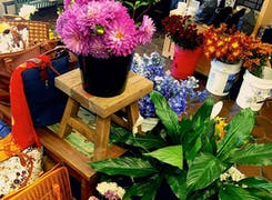 Bulk flowers, plants, potted flowers and more in our Wilmington showroom